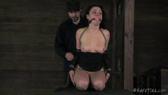 Pussy Whipped | Download from Files Monster