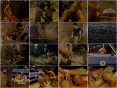 Bareback Rangers (1984) - Al Parker, Nick Rogers, Chris West | Download from Files Monster