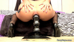 Roxy Raye-Black Toys And Lingerie