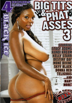 Big Tits And Phat Asses 3 (2012)