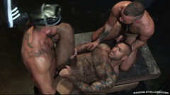 Muscle Bears In Threesome Fuck