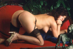 Penthouse Vintage Pets (1969-1994), vol. II | Download from Files Monster