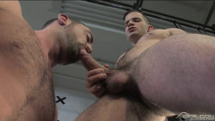 Musclebound | Download from Files Monster