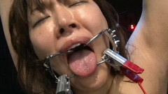 Current Blame Best Shock Torture Electric Shock | Download from Files Monster