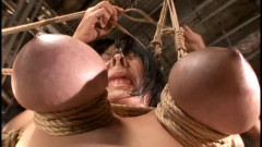 Cine magic bdsm collection | Download from Files Monster
