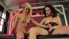 Superstar Miran Does A Threesome!   Download from Files Monster
