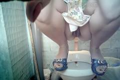 Hidden Cam in Women Toilet | Download from Files Monster
