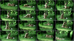 Peeped at the beach 9 - Voyeur, Nudism HD | Download from Files Monster