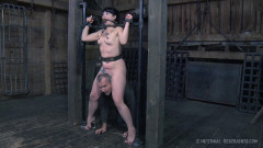 The Farm Part 2 Tortured Sole | Download from Files Monster