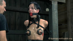 Elise Graves   Sore Screams | Download from Files Monster
