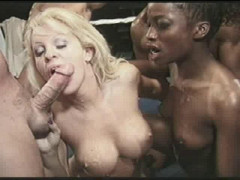 American Cocksucking Championship part 05 | Download from Files Monster